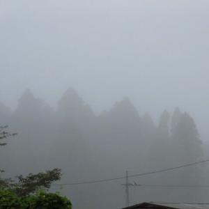 朝は霧 その後は晴れて 猛暑日に (自宅観測)