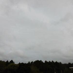 予報より 昼間の気温 低くなる (昨日の予報より)