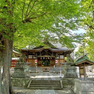 瀧野川八幡神社(滝野川八幡神社) / 東京都北区