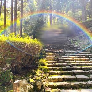飛瀧神社✴︎那智の滝✴︎熊野那智大社✴︎青岸渡寺✴︎熊野本宮大社