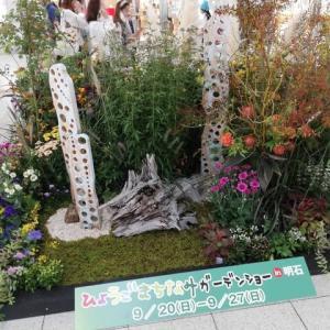 ひょうごまちなみガーデンショー2020