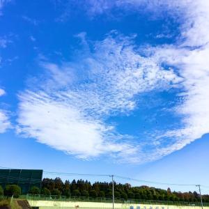 青空に映える。