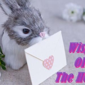 第五回 英語版『耳をすませば(Wisper Of The Heart)』で、学ぼうw!