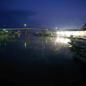 蓬莱町(今朝の敦賀水産卸売市場)