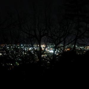 敦賀市街遠景(天筒山登山道より)