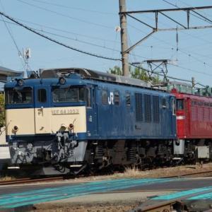EF81-134とEF64-1053