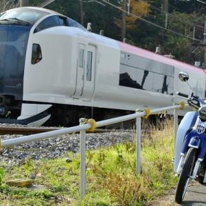 成田エクスプレスE259系&C125