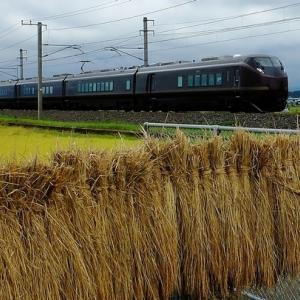 E655系なごみ常磐線 団臨