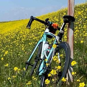新しい自転車を買おうと思っております