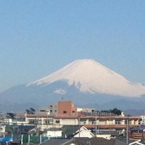 富士山が見える!