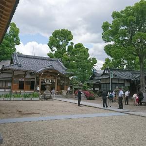 野見神社お宮参り 訪問着きつけ