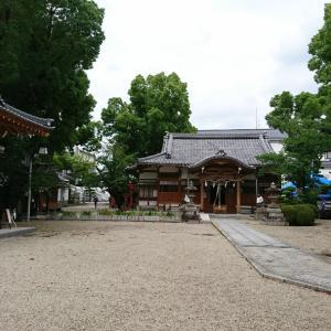 お宮参り 野見神社の花手水