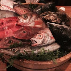三宮で瀬戸内鮮魚、刺身のおいしいお店「かねも」