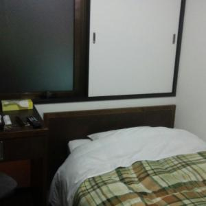 新潟ビジネスホテル ターミナルイン・シングルイン第3に宿泊
