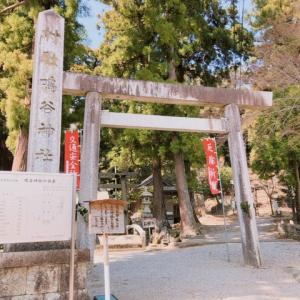 狛犬ならぬ狛猿の神社と鳴谷山聖宝寺
