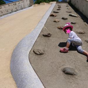 大きな滑り台デビュー★アナ雪のTシャツの2歳8ヶ月の娘★