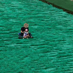 ハーベストの丘★初めての芝すべり★迫力満点のすべり心地★