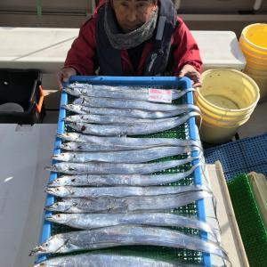 1月18日(土)タチウオ遠征便