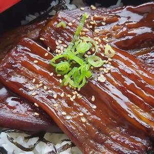 Nasu no Unagi modoki Don. Rice bowl topped with aubergine that looks like Unagi Kabayaki (grilled eel in Japanese style). 100% plant based. #tokyodollnlcookvegi #tokyodollnlcookrice #Japanesefood #japanesecuisine #washoku #confortfood #shojin #shojinryori #shojincuisine #japanseten #lekkereten #vegan #vegetarian #veganistisch #vegetarisch #plantbased #meatfree #veggie #vegannl #vegannederland #aubergine #don #donburi #unagi #unagidon #kabayaki #unadon #おうちごはん