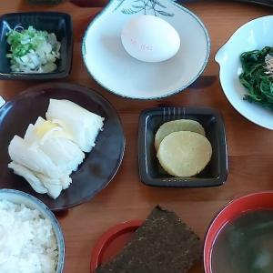 Travel Japan at home. Ryokan breakfast. Complete meal in Japanese Hotel style. Homemade salted- horse mackerel, Natto, nori, egg for TKG, home-made pickled vegetables, miso soup, rice and so. #natto #nattou #tokyodollnlcookfishmain #tkg #natto #Japanesefood #japanesecuisine #breakfast #japanesebreakfast #reizen #washoku #healthylifestyle #japantravel #ryokan #japanesehotel #ontbijt #旅館ご飯 #おうち時間を楽しむ #japanseten #lekkereten #vegetarisch #vegetarian #meatfree #traveljapan #virtualtravel #鯵の開き