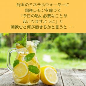 簡単で効果抜群! 朝のルーティーン  国産レモンとミネラルウォーターだけ!