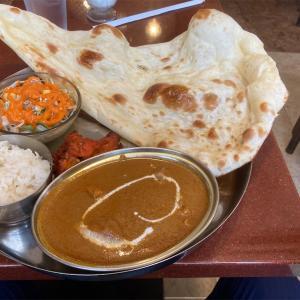 福岡舞鶴、ナーナック福岡店本場インド料理でカレーのセットを食べただけのおじさん。