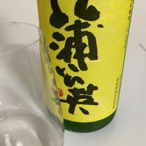 【若波のところ】蒲公英(たんぽぽ)、特別本醸造の味の感想と評価【手ごろなお値段で美味】