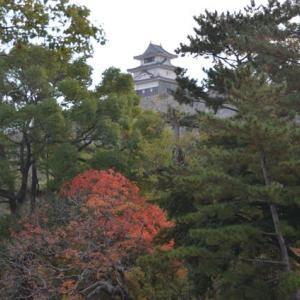 四国の名城ー丸亀城