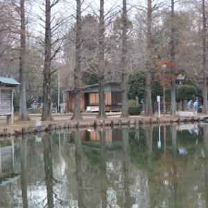 別所沼公園とヒアシンスハウス(風信子荘)