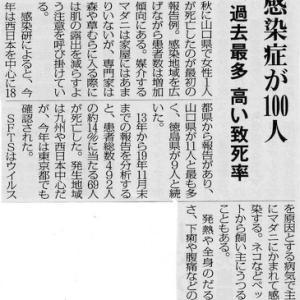 危険がいっぱい  夏の里山 !!!