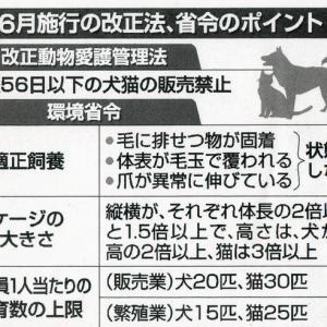 動物愛護管理法 2021年6月施行分 ???