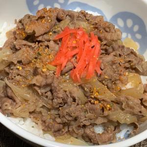 牛丼とフィヨとジーナ〜