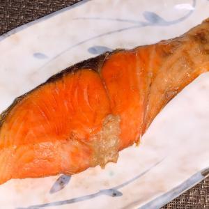 鮭とフィヨとジーナ〜