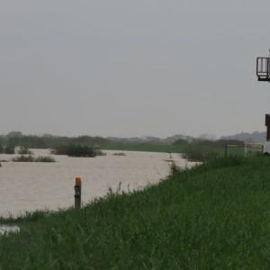 北新田 利根川本流が決壊する前に~北新田と利根川の関係 排水路からの