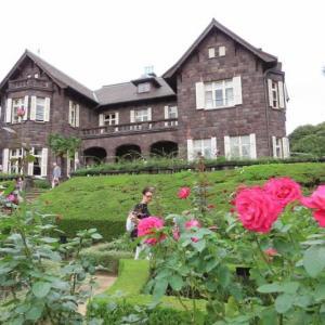 旧古河庭園 洋館と薔薇
