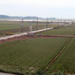 国道6号から新大利根橋(北新田口~野田間)の区間 道路状況