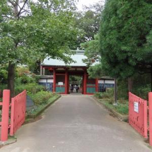 日本三大東照宮「仙波東照宮 」