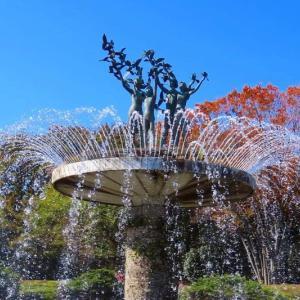昭和記念公園 黄葉・紅葉まつり(カナールイチョウ並木とかたらいのイチョウ並木)