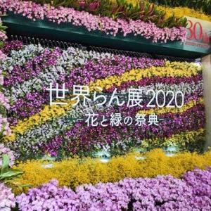 世界らん展日本大賞「花と緑の祭典」を見に