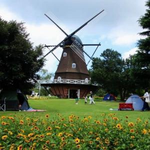 アンデルセン公園 ひまわり祭り