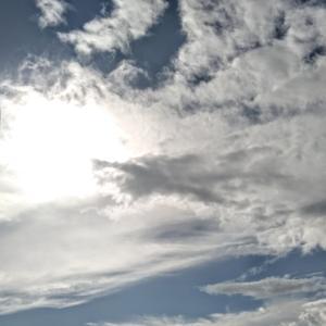 台風接近前、青空のひとときを味わう