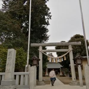 平柳 星宮神社