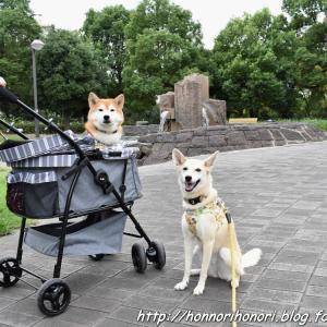 元浜公園で夕散歩♪