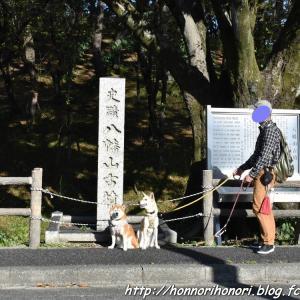 鶴舞公園でお散歩♪ vol.2 - 古墳 -