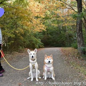 上野森林公園でお散歩♪ vol.3