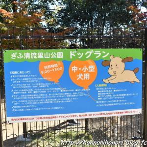 ぎふ清流里山公園へ♪ vol.3 - ドッグラン -