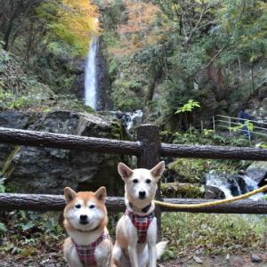 養老公園へ♪ vol.2 - 養老の滝 -