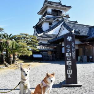 高知城へ♪ vol.4 - 12月の帰省旅・14 -