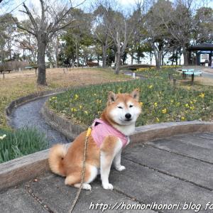 早春の木曽三川公園センター♪ vol.3