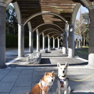 蜻蛉池公園でお散歩♪ vol.3